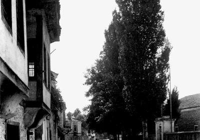 Η Κατερίνη του 1918: είχε περίπου 7.500 κατοίκους εκ των οποίων 1.500 Οθωμανοί και 20 Εβραίοι