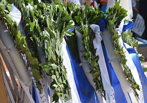 Καταθέσεις στεφάνων για την επέτειο της 25ης Μαρτίου στην Κατερίνη