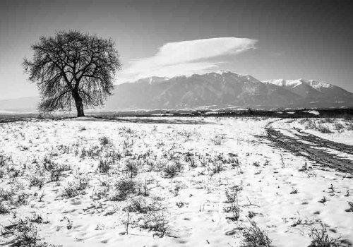 Σιωπηλή, χιονισμένη πόλη αναζητά συγγραφέα