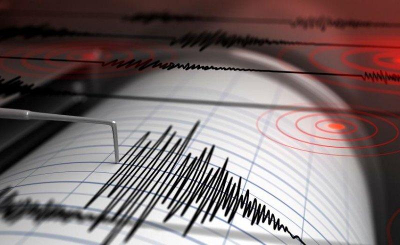 Ισχυρή σεισμική δόνηση στην περιοχή της Ελασσόνας